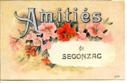 16130 Amitiés De SEGONZAC - Jolie Fantaisie Envoyée à Léoville En Charente-Maritime (partie En Patois) - éditeur J.S.D. - France