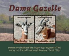 Gambia  2018    Fauna  Dama  Gazelle  I201901 - Gambia (1965-...)