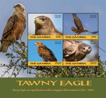 Gambia  2018    Fauna  Tawny Eagle    I201901 - Gambia (1965-...)