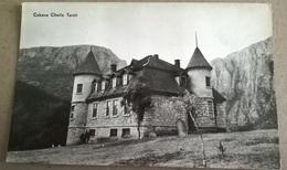 CABANA CHEILE TURZII (192) - Romania