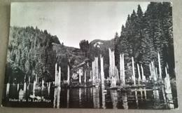 VEDERE DE LA LACUL ROSU (193) - Romania