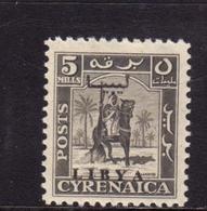 LIBIA LIBYA 1951 REGNO INDIPENDENTE EMISSIONE PER LA CIRENAICA CYRENAICA 5m MLH - Libia