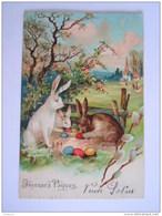 Pâques Pasen Lapins Oeufs Hazen Eieren Carte Gaufrée Relief Circulée 1909 Paris - Anvers P.F.B. Série 5100 - Pasen