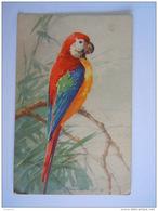 Perroquet Papegaai Gelopen Circulée 1928 Ottignies - Birds