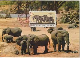 Etats-Unis Carte Maximum Animaux 1970 Eléphants 891 - Cartoline Maximum
