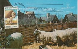 Etats-Unis Carte Maximum Animaux 1971 Moutons 916 - Cartoline Maximum