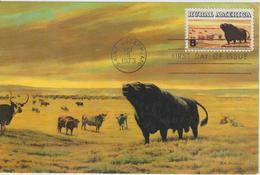 Etats-Unis Carte Maximum Animaux 1973 Taureau 1005 - Cartoline Maximum