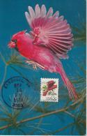 Etats-Unis Carte Maximum Oiseaux 1978 Cardinal 1206 - Cartoline Maximum