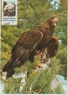 Etats-Unis Carte Maximum Oiseaux 1980 Aigle 1291 - Cartoline Maximum