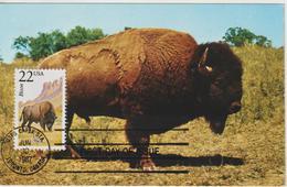 Etats-Unis Carte Maximum Animaux 1987 Bison 1752 - Cartoline Maximum