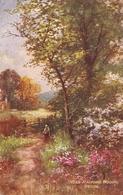 """""""G.H. Jenkins. Near Radford Woods. Davon Tuck Oilette Picturesque Devon Ser. PC # 7858 - Tuck, Raphael"""