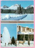 Postcard - The High Tatras - Tatranska Polianka,  Czechoslovakia - Other