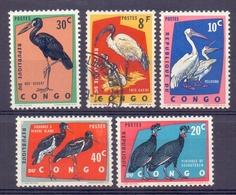 Rep. Du Congo - Vogels - Pélicans