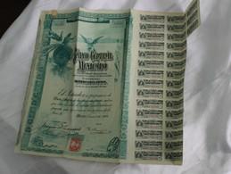 Banco Central Maxicano 1908 - Shareholdings