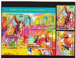 SRO255 UNO NEW YORK 1996 MICHL 716/17 + BLOCK 13 ** Postfrisch SIEHE ABBILDUNG - New York -  VN Hauptquartier
