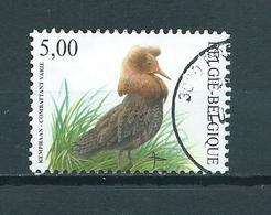 2002 Belgium Buzin,birds,oiseaux,vögel 5,00 EURO Used/gebruikt/oblitere - België