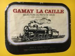 9191 - Locomotive à Vapeur Gamay La Caille Suisse - Treni