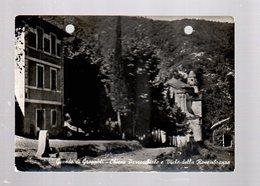 664  GAVEDO Di GROPPOLI Chiesa Parrocchiale E Viale Della  Rimembranza - Massa