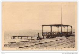 """Cpa  ( Dep 83 )   à HYERES    """" La Plage""""   Maritima Hôtel  - Terrasse Sur La Mer Et Les îles - Hyeres"""