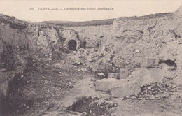 Carthage (Tunisie) - Nécropole Des 1500 Tombeaux - Tunisie