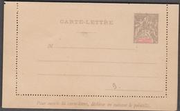 NOUVELLE CALEDONIE 1 Entier Postal Neuf YT 21-CL Carte Lettre Timbre émissions Coloniales De1900 15c Gris - Postwaardestukken