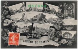 21 Souvenir De LIERNAIS - Autres Communes