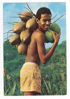 Seychelles N°75 Native Boy Jeune Garçon Boy Avec Noix De Coco Vertes Photo Eden LTD Box 326 Mahe - Seychelles