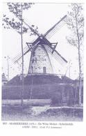 Mariekerke: De Witte Molen - Scheldedijk ( 2 Scans) - Andere