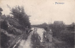 619 Neufchateau Paysage - Neufchateau