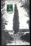 45, Environs De Corbeilles Du Gatinais, Beau, Arbre De La Liberte - France