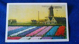 S-Gravenhage Netherlands - Den Haag ('s-Gravenhage)