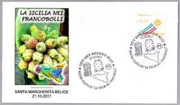 Sicilia En Los Sellos - FICODINDIA - CACTUS. Santa Margherita Belice 2017 - Cactus