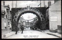 45, Briare, Comice Agricole 1910, Entree De La Ville, Cote Sud - Briare