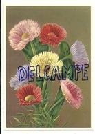 Bouquet Multicolore. Coloprint Select 9062 - Non Classés