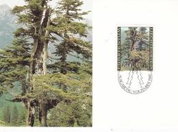 Liechtenstein 1980 The Forest In 4 Seasons Set Of 4 Maximum Cards And Original Envelope - Maximum Cards