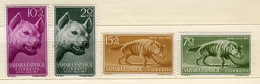Spanish Sahara 1957 Hyena Animals Tooth 4 Stamps - Stamps