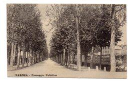 FAENZA  PASSEGGIO PUBBLICO       1916 - Faenza