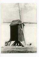 D053 - Mater De Oude Molen - Anno 1768 - Molen - Moulin - Mill - Mühle - Autres