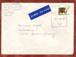 Luftpost, Birnbaum, Anola Nach Bremen 1993 (73095) - Covers & Documents