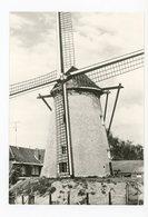 D056 - Hamme De Grote Napoleon - Anno 1810 - Molen - Moulin - Mill - Mühle - België