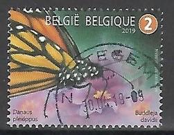 2019 Fauna Butterfly Vlinder Papillon Insect Meersman  Centrale Stempel !! - Bélgica