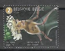2019 Fauna Flora Vleermuis Chauve Souris Bat  Meersman  Centrale Stempel !! - Bélgica