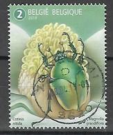 2019 Fauna Flora Kever Coccinelle Beetle  Meersman  Centrale Stempel !! - Bélgica