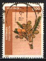 INDIA - 1997 - Pentoxylon - Pianta Fossile - USATO - Usati
