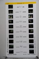 LESTRADE :    322    ROUEN  2 - Visionneuses Stéréoscopiques