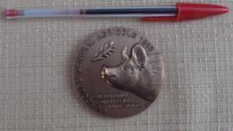 010, Médaille Salon International De L'Agriculture De Paris 1993, Monnaie De Paris, état TB, Frais De Port Aux Tarifs De - Otros