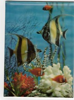3-D Postcard, Aquarium Fish Scene,  1971 Finland - Cartes Postales