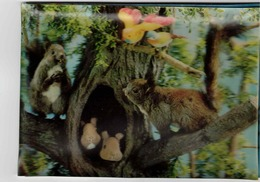 3-D Postcard, Squirrels & Birds In A Tree, 1963 Postcard - Cartes Postales