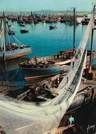 29 Douarnenez Le Port Des Sardiniers (2 Scans) - Douarnenez