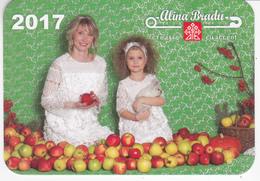 Moldova , 2017  , Designer Alina Bradu , Calendrier - Kalenders